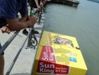 Sunking - Das Rennen